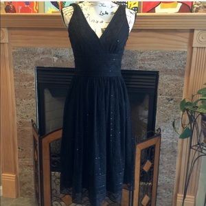 Maggy London Fit and Flare Lace and Sequin Dress